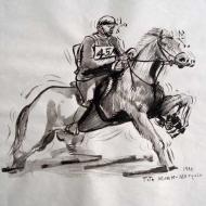 Equestrian 3