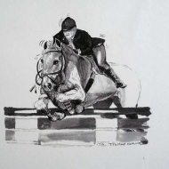 Equestrian 12