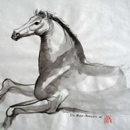 Equestrian 7
